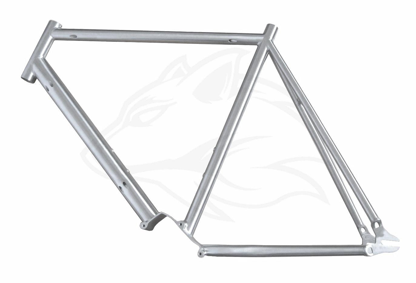 Pinion Trekking Rahmen intern/extern – Individueller Fahrradbau ...