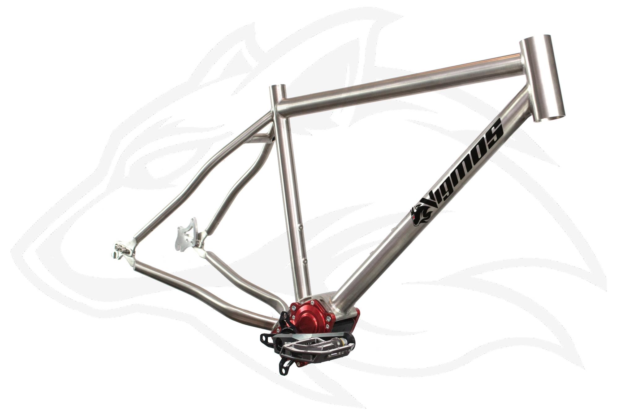 Pinion Titanrahmen nach Maß inkl Getriebe – Individueller Fahrradbau ...